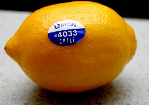 Nên in tem nhãn hoa quả ở các cơ sở uy tín