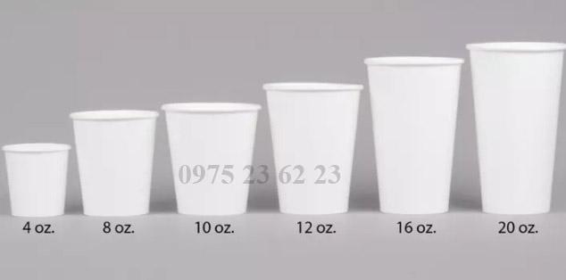 Các size cốc thông dụng hiện nay