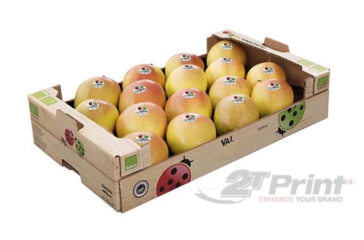 mẫu khay giấy đựng hoa quả mang nhiều lợi ích