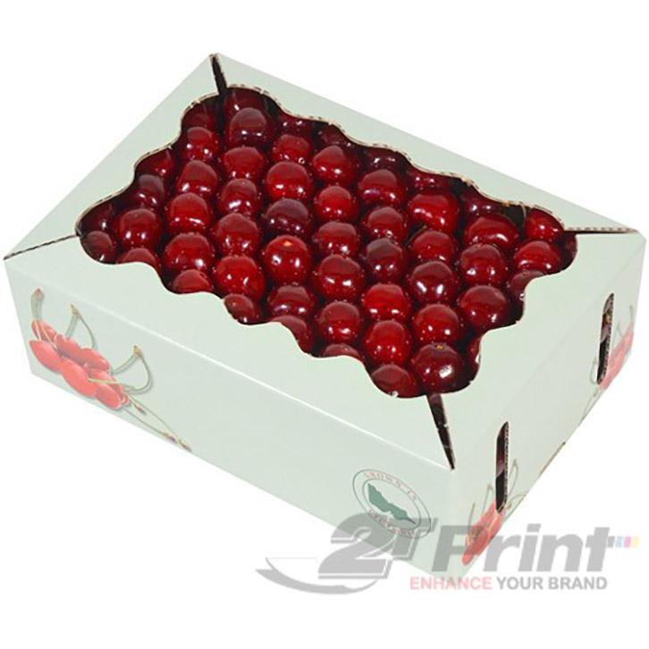 mẫu khay giấy đựng hoa quả chất liệu carton