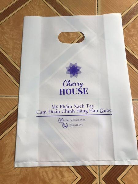 mẫu túi nilon đựng mỹ phẩm