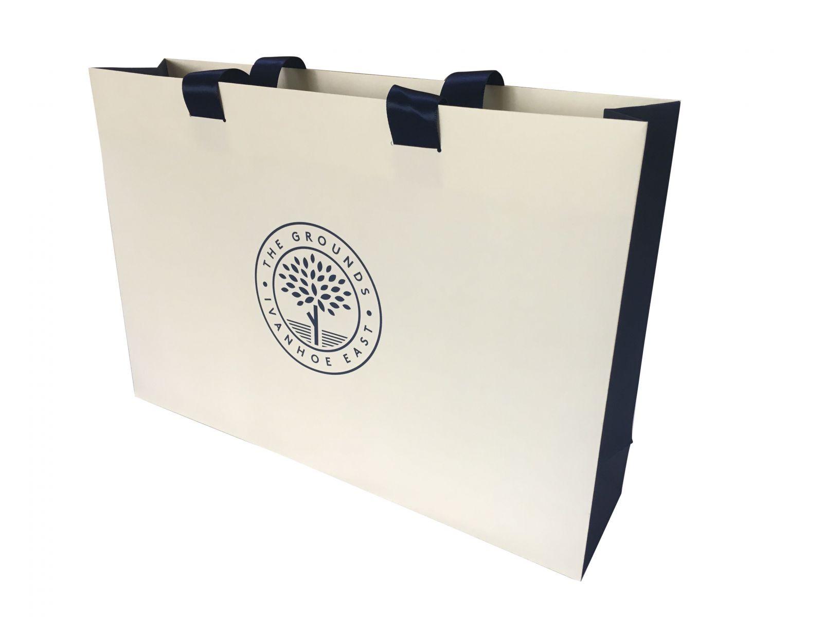 Túi giấy cao cấp in logo doanh nghiệp