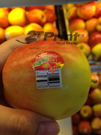 mẫu in tem nhãn hoa quả
