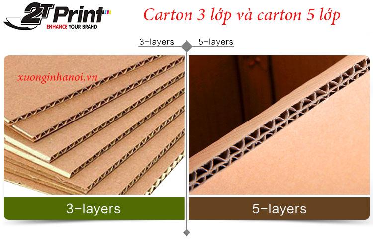 Thùng carton 3 lớp và 5 lớp là 2 loại được dùng phổ biến hiện nay.