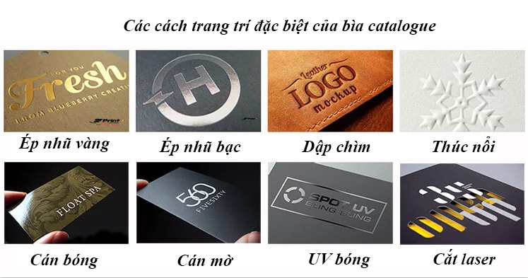 chất liệu in catalogue