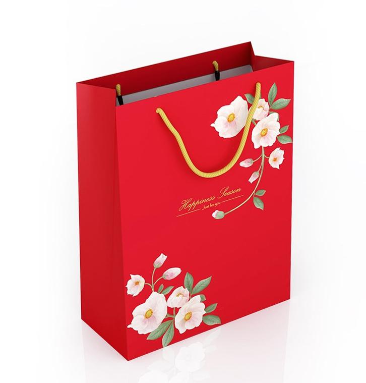 mẫu túi giấy đựng quà tết